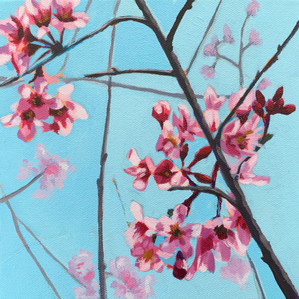 Cherry Blossoms, cherry blossom painting, Leigh Ann Torres