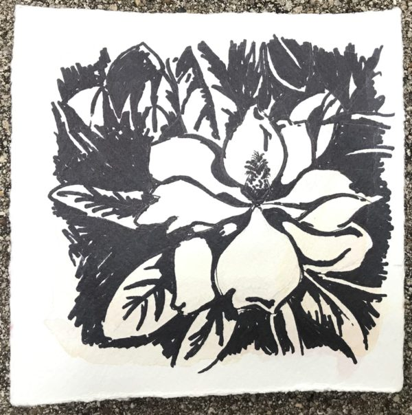 magnolia, Leigh Ann torres