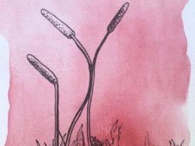 Dancing Weeds